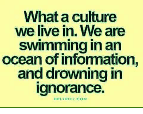 Memes, Live, and Ocean: What a culture  we live in. We are  Swimming in an  ocean of infonmation,  and drowning in  ignorance.  PLYRIKZ.COM
