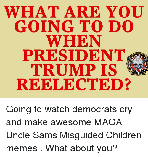 Children, Memes, and Trump: WHAT ARE  GOING TO D0  WHEN  PRESIDENT  TRUMP IS  REELECTED?  1775 Going to watch democrats cry and make awesome MAGA Uncle Sams Misguided Children memes . What about you?