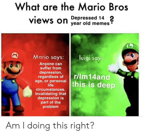 What Are The Mario Bros Depressed 14 Views On Year Old Memes