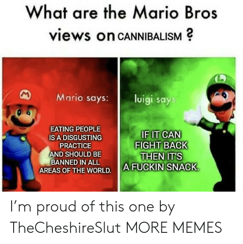 Dank, Memes, and Target: What are the Mario Bros  views on CANNIBALISM  M  Mario says:  luigi says  EATING PEOPLE  IF IT CAN  FIGHT BACK  THEN IT'S  A FUCKIN SNACK  IS A DISGUSTING  PRACTICE  AND SHOULD BE  BANNED IN ALL  AREAS OF THE WORLD. I'm proud of this one by TheCheshireSlut MORE MEMES