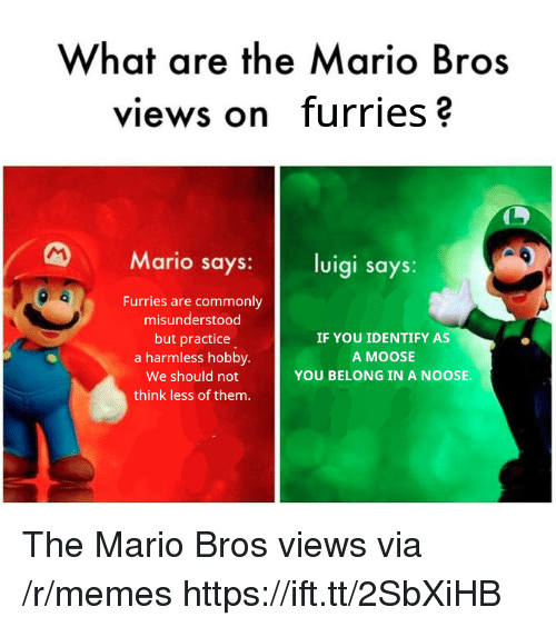 Memes, Mario, and Moose: What are the Mario Bros  views on furries?  Mario says: luigi says:  Furries are commonly  misunderstood  but practice  a harmless hobby.  We should not  think less of them.  IF YOU IDENTIFY AS  A MOOSE  YOU BELONG IN A NOOSE. The Mario Bros views via /r/memes https://ift.tt/2SbXiHB
