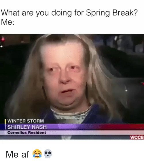 Af, Funny, and Winter: What are you doing for Spring Break?  Me:  WINTER STORM  SHIRLEY NASH  Cornelius Resident  WCCB Me af 😂💀