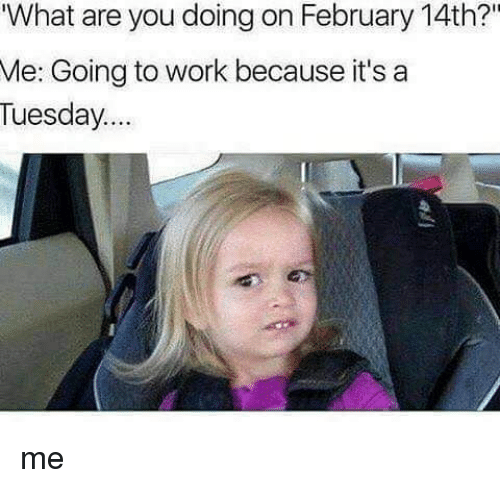 "Funny, Are You Doing, and  Go to Work: What are you doing on February 14th?""  Me: Going to work because it's a  Tuesday me"
