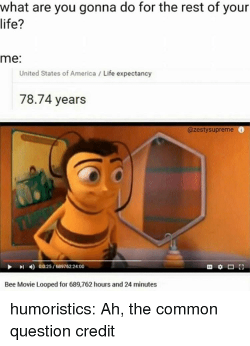 America, Bee Movie, and Life: what are you gonna do for the rest of your  life?  me:  United States of America/ Life expectancy  78.74 years  @zestysupreme  4)  0025 / 689762 2400  Bee Movie Looped for 689,762 hours and 24 minutes humoristics:  Ah, the common question credit