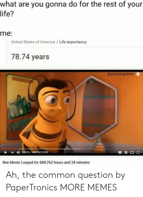 Questioningly: what are you gonna do for the rest of your  life?  me:  United States of America/ Life expectancy  78.74 years  @zestysupreme  4)  0025 / 689762 2400  Bee Movie Looped for 689,762 hours and 24 minutes Ah, the common question by PaperTronics MORE MEMES