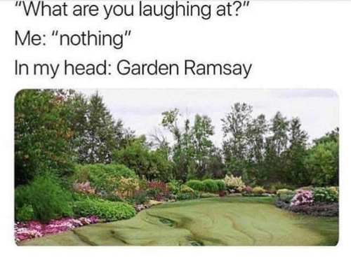 "Head, You, and What: ""What are you laughing at?""  Me: ""nothing""  In my head: Garden Ramsay"