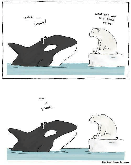 Lizclimo Tumblr: what  are you  trick  or  Supposed  treat!  to be  I'm  a  panda.  lizclimo. tumblr.com