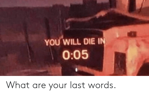 Last Words: What are your last words.