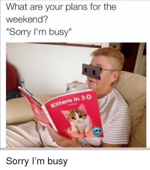 "Funny, Sorry, and Kittens: What are your plans for the  weekend?  ""Sorry I'm busy""  Kittens in 3-D Sorry I'm busy"