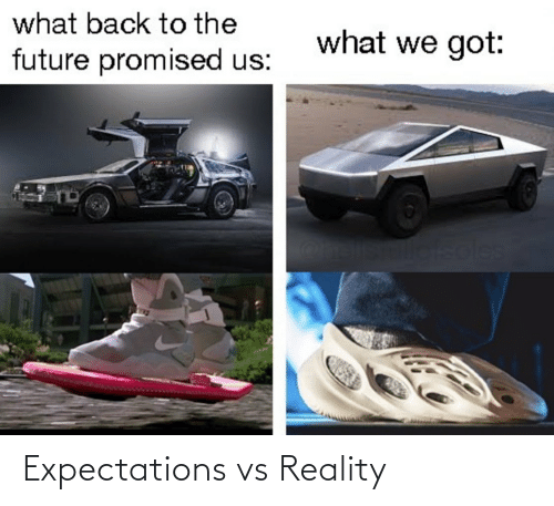 Future: what back to the  what we got:  future promised us:  soles Expectations vs Reality