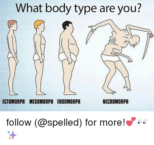 Memes, Body Type, and 🤖: What body type are you?  ECTOMORPH MESOMORPH ENDOMORPH  NECROMORPH follow (@spelled) for more!💕👀✨