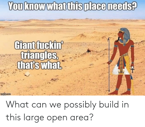 large: What can we possibly build in this large open area?
