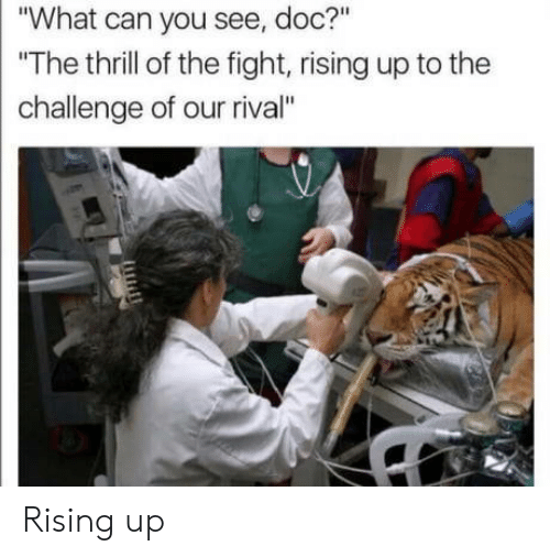 """Fight, Doc, and Can: """"What can you see, doc?""""  The thrill of the fight, rising up to the  challenge of our rival"""" Rising up"""