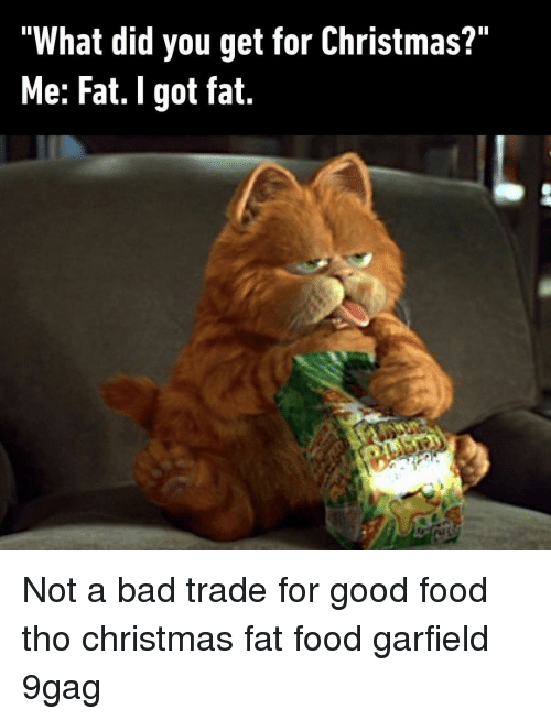 "9gag, Bad, and Christmas: ""What did you get for Christmas?""  Me: Fat. I got fat. Not a bad trade for good food tho⠀ christmas fat food garfield 9gag"