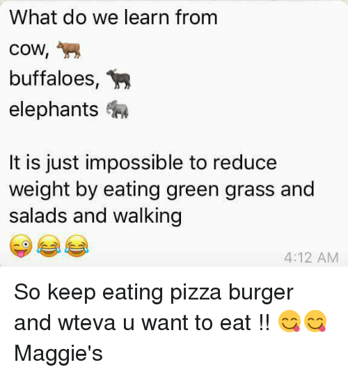 Memes, Pizza, and Elephants: What do we learn from  cow,  buffaloes  elephants  It is just impossible to reduce  weight by eating green grass and  salads and walking  4:12 AM So keep eating pizza burger and wteva u want to eat !! 😋😋 Maggie's