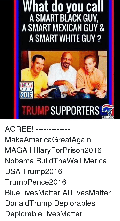 Memes, 🤖, and Usa: What do you call  A SMART BLACK GUY.  A SMART MEICAN GUY &  A SMART WHITE GUY  TRUMP  2016  TRUMP  SUPPORTERS  TRUMP AGREE! ------------- MakeAmericaGreatAgain MAGA HillaryForPrison2016 Nobama BuildTheWall Merica USA Trump2016 TrumpPence2016 BlueLivesMatter AllLivesMatter DonaldTrump Deplorables DeplorableLivesMatter