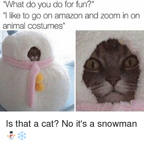 "snowmans: ""What do you do for fun?""  ""l like to go on amazon and zoom in on  animal costumes"" Is that a cat? No it's a snowman ⛄️❄️"