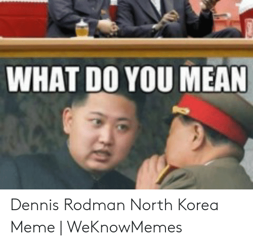 North Korea Meme: WHAT DO YOU MEAN Dennis Rodman North Korea Meme | WeKnowMemes