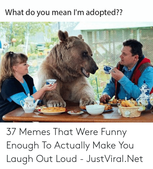 Make You Laugh: What do you mean I'm adopted?? 37 Memes That Were Funny Enough To Actually Make You Laugh Out Loud - JustViral.Net