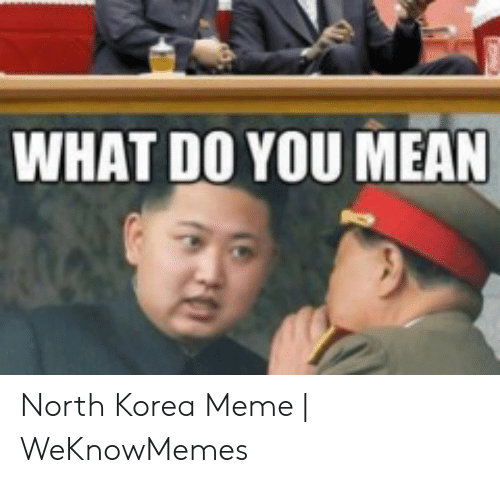 North Korea Meme: WHAT DO YOU MEAN North Korea Meme | WeKnowMemes