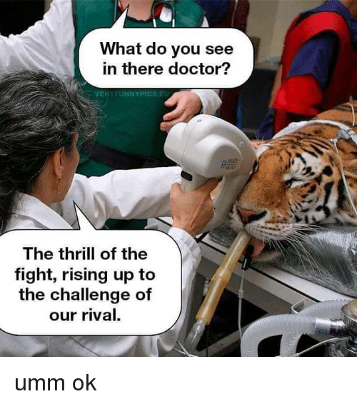 Doctor, Fight, and Challenge: What do you see  in there doctor?  VERYFUNNYPICS.EU  082  The thrill of the  fight, rising up to  the challenge of  our rival. umm ok