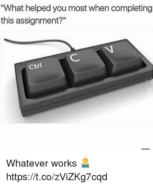 """You, Works, and What: What helped you most when completing  this assignment?""""  Ctri Whatever works 🤷♂️ https://t.co/zViZKg7cqd"""