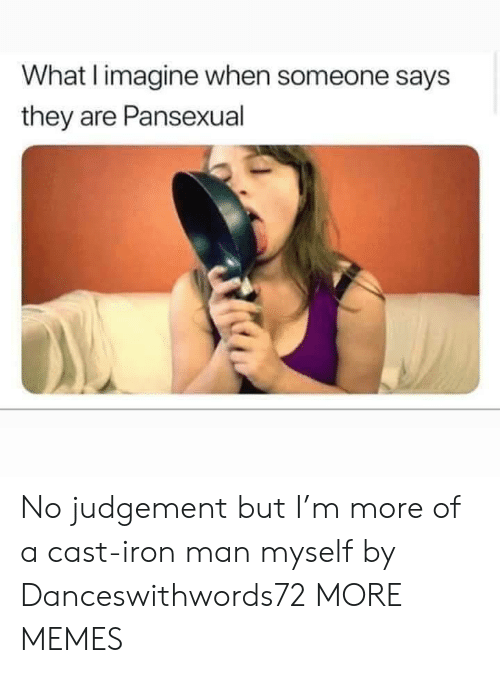 Dank, Iron Man, and Memes: What I imagine when someone says  they are Pansexual No judgement but I'm more of a cast-iron man myself by Danceswithwords72 MORE MEMES