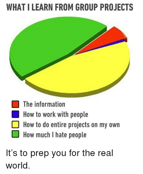 Group Projects: WHAT I LEARN FROM GROUP PROJECTS  The information  How to work with people  How to do entire projects on my own  OHow much I hate people It's to prep you for the real world.