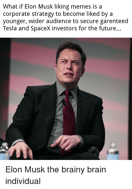 Future, Memes, and Brain: What if Elon Musk liking memes is a  corporate strategy to become liked bya  younger, wider audience to secure garenteed  Tesla and Spacex investors for the future.. Elon Musk the brainy brain individual