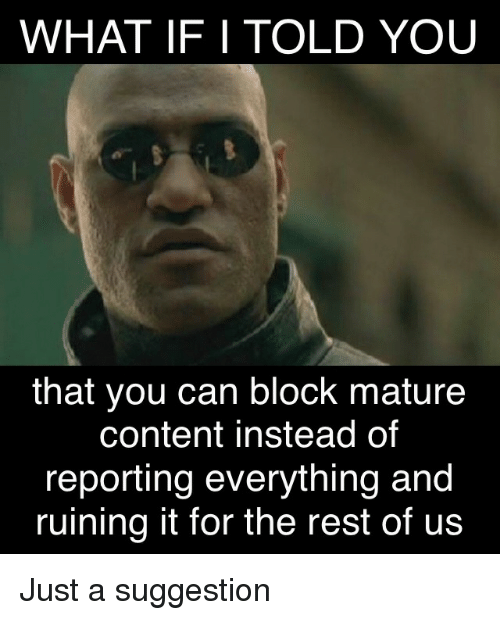 Content, Rest, and Can: WHAT IF I TOLD YOU  that you can block mature  content instead of  reporting everything and  ruining it for the rest of us Just a suggestion
