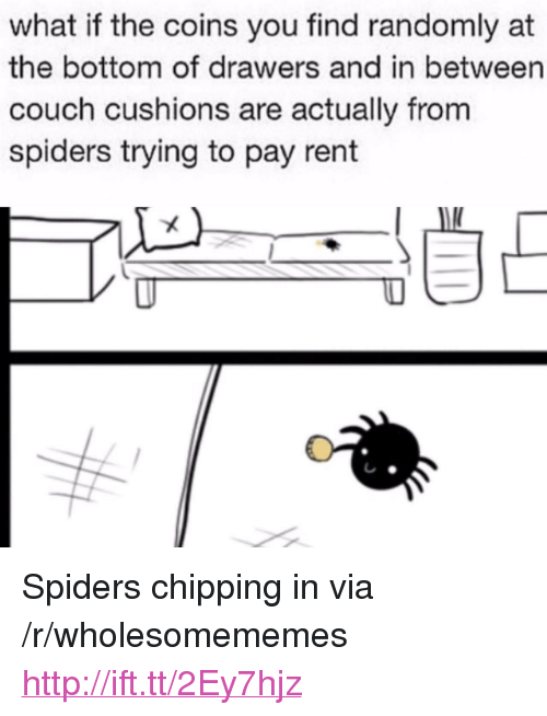 """Couch, Http, and Spiders: what if the coins you find randomly at  the bottom of drawers and in between  couch cushions are actually from  spiders trying to pay rent <p>Spiders chipping in via /r/wholesomememes <a href=""""http://ift.tt/2Ey7hjz"""">http://ift.tt/2Ey7hjz</a></p>"""