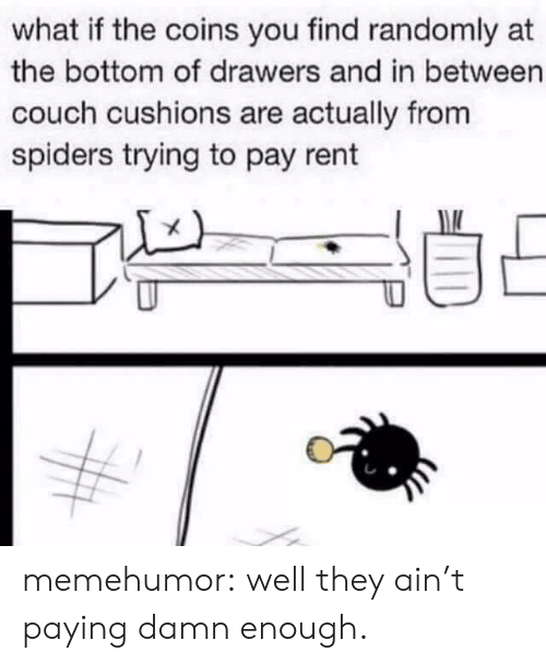 drawers: what if the coins you find randomly at  the bottom of drawers and in between  couch cushions are actually from  spiders trying to pay rent memehumor:  well they ain't paying damn enough.