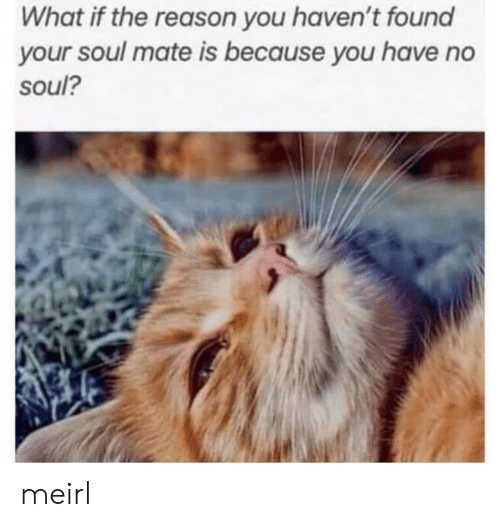 Reason, MeIRL, and Soul: What if the reason you haven't found  your soul mate is because you have no  soul? meirl