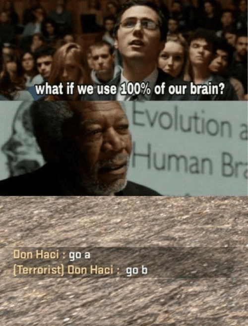 Brain, Evolution, and Human: what if we use!00% of our brain?  Evolution a  Human Br  Don Haci: go a  Terrorist) Don Haci: gob