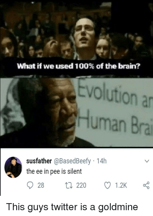 Goldmine: What if we used 100% of the brain?  Evolution a  Human Bra  susfather @BasedBeefy 14h  the ee in pee is silent  28 t 220  1.2K This guys twitter is a goldmine