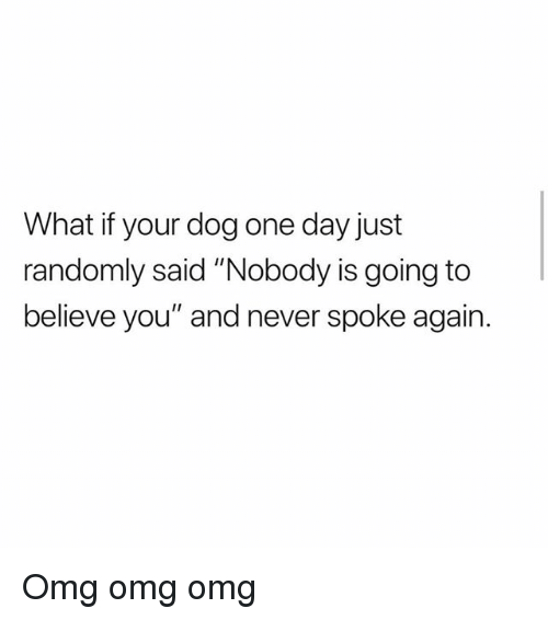 """Memes, Omg, and Never: What if your dog one day just  randomly said """"Nobody is going to  believe you"""" and never spoke again. Omg omg omg"""