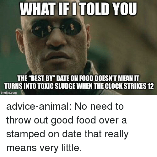 """Advice, Clock, and Food: WHAT IFITOLD YOU  THE """"BEST BY"""" DATE ON FOOD DOESNT MEAN IT  TURNS INTO TOXIC SLUDGE WHEN THE CLOCK STRIKES 12  imgfip.com advice-animal:  No need to throw out good food over a stamped on date that really means very little."""