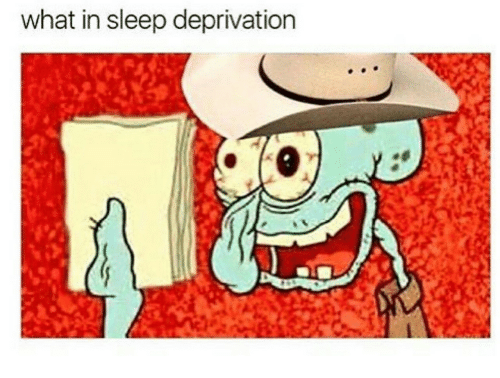 sleep deprivation: what in sleep deprivation