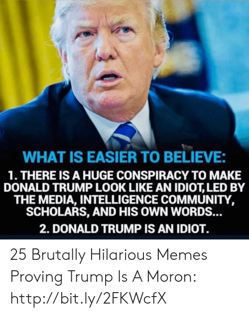 Community, Donald Trump, and Memes: WHAT IS EASIER TO BELIEVE:  1. THERE IS A HUGE CONSPIRACY TO MAKE  DONALD TRUMP LOOK LIKE AN IDIOT, LED BY  THE MEDIA, INTELLIGENCE COMMUNITY,  SCHOLARS, AND HIS OWN WORDS...  2. DONALD TRUMP IS AN IDIOT. 25 Brutally Hilarious Memes Proving Trump Is A Moron: http://bit.ly/2FKWcfX