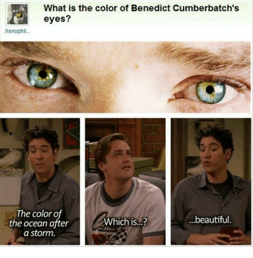 Beautiful, Memes, and Ocean: What is the color of Benedict Cumberbatch's  Xenophil..  The color o  the ocean after  a storm  Which is...?  ...beautiful.