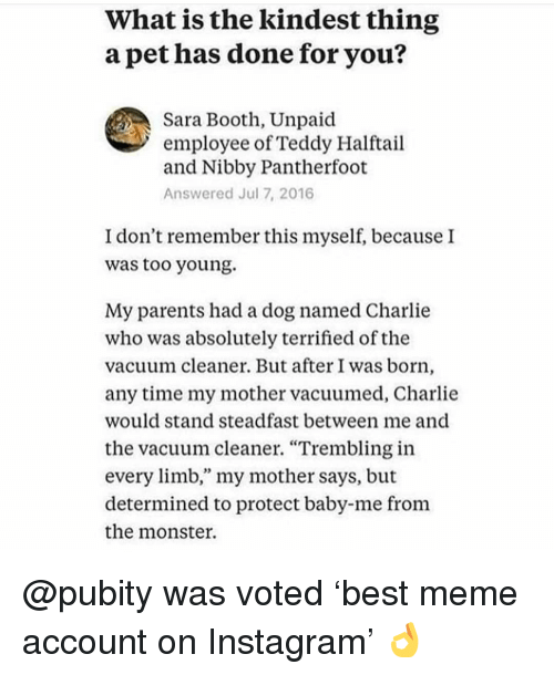"Charlie, Instagram, and Meme: What is the kindest thing  a pet has done for you?  Sara Booth, Unpaid  employee of Teddy Halftail  and Nibby Pantherfoot  Answered Jul 7, 2016  I don't remember this myself, because I  was too young.  My parents had a dog named Charlie  who was absolutely terrified of the  vacuum cleaner. But after I was born,  any time my mother vacuumed, Charlie  would stand steadfast between me and  the vacuum cleaner. ""Trembling in  every limb,"" my mother says, but  determined to protect baby-me from  the monster. @pubity was voted 'best meme account on Instagram' 👌"