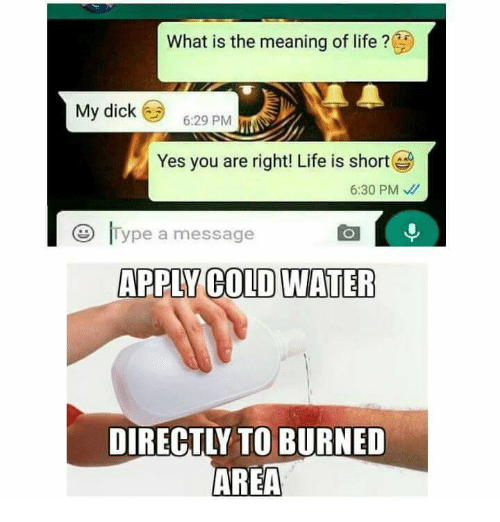 Memes, What Is, and 🤖: What is the meaning of life  My dick  6:29 PM  Yes you are right! Life is short  6:30 PM  Type a message  ARPIY COLDWATER  AREA