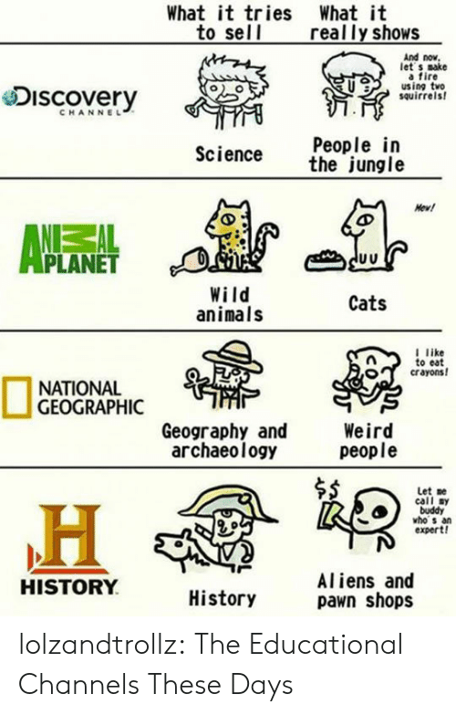Animals, Cats, and Fire: What it tries What it  to sell  really shows  And now  let s sake  a fire  using two  squirrels  Discovery  CHANNEL  People in  the jungle  Science  Newl  PLANET  Wild  animals  Cats  l like  to eat  crayons!  NATIONAL  GEOGRAPHIC  Weird  people  Geography and  archaeology  Let me  call sy  buddy  vho s an  expert!  Aliens and  pawn shops  HISTORY  History lolzandtrollz:  The Educational Channels These Days