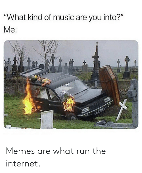 """Internet, Memes, and Music: """"What kind of music are you into?""""  Me: Memes are what run the internet."""