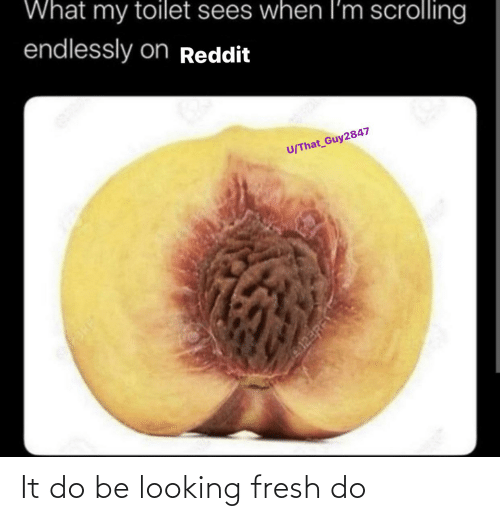 endlessly: What my toilet sees when l'm scrolling  endlessly onReddit  U/That Guy2847  023RF It do be looking fresh do
