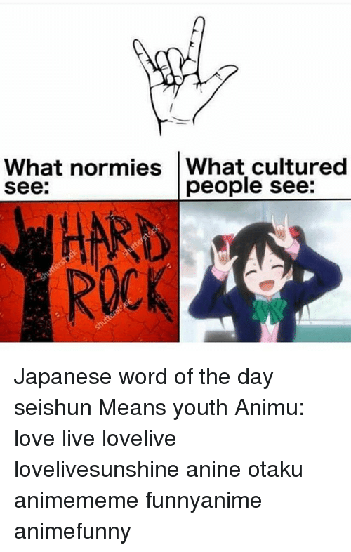Animememe: What normies What cultured  see:  people see:  HARD  ROCK Japanese word of the day 青春 せいしゅん seishun Means youth Animu: love live lovelive lovelivesunshine anine otaku animememe funnyanime animefunny