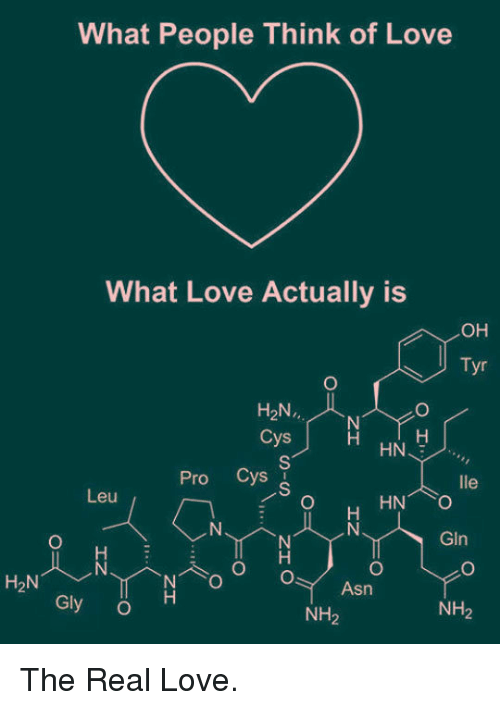 Love, The Real, and Pro: What People Think of Love  What Love Actually is  OH  Tyr  H2N.,  Cys  Pro Cys  Leu  GIn  H2N  Asn  Gly O  NH2  NH2 <p>The Real Love.</p>