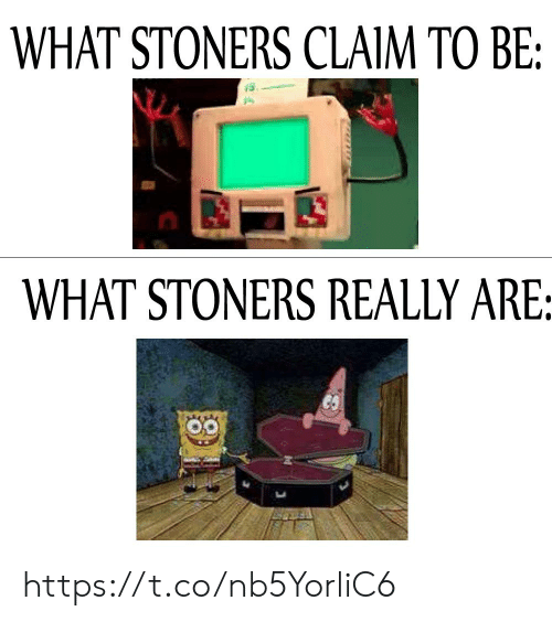 What, Really, and Claim: WHAT STONERS CLAIM TO BE:  WHAT STONERS REALLY ARE: https://t.co/nb5YorliC6