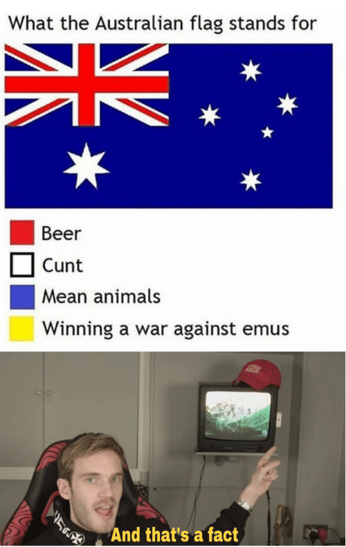 flag: What the Australian flag stands for  Beer  Cunt  Mean animals  Winning a war against emus  And that's a fact