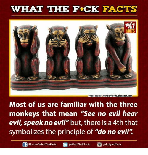 """see no evil: WHAT THE FCK FACTS  FACTS  mage source wonderfulrife.blogspot.com  Most of us are familiar with the three  monkeys that mean """"See no evil hear  evil, speak no evil""""but, there is a 4th that  symbolizes the principle of """"do no evil""""  FB.com/WhatThe Facts  @WhatTheFFacts"""